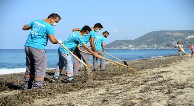 Belediye ekipleri Alanya sahillerini temizliyor