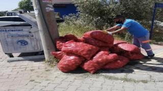Alanya'da tarım ürünleri üreticiler tarafından çöpe atıldı