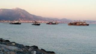 Balon balıklarının artışına büyük balık tekneleri sebep oluyor