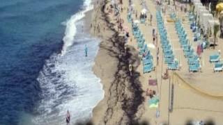 Kleopatra plajını yosunlar kapladı